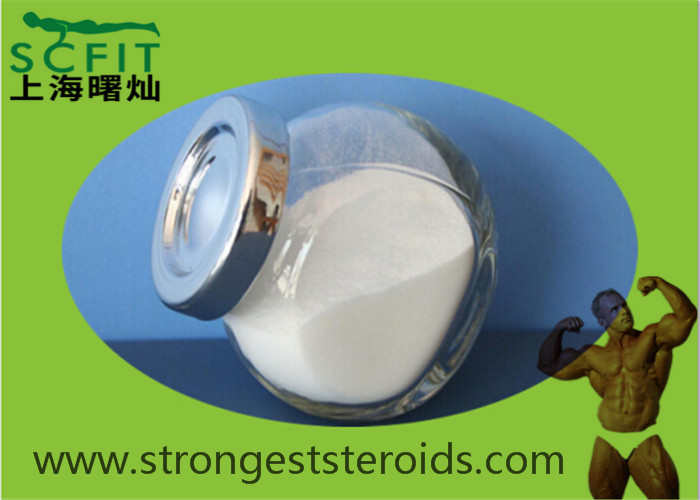 Muscle Gain Injectable Steroid Nandrolone 434-22-0 White Crystalline Powder For Male Enhancement